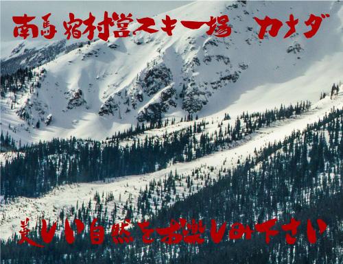 南馬宿村営スキー場 カナダ