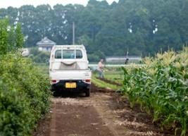 南馬宿村 軽トラック