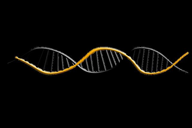 蔓延する遺伝病